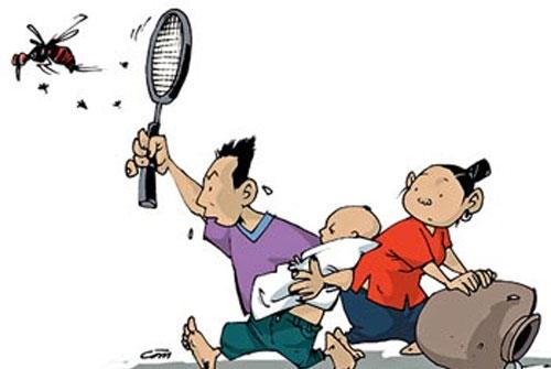 Diệt muỗi trong nhà, ngăn ngừa sốt xuất huyết