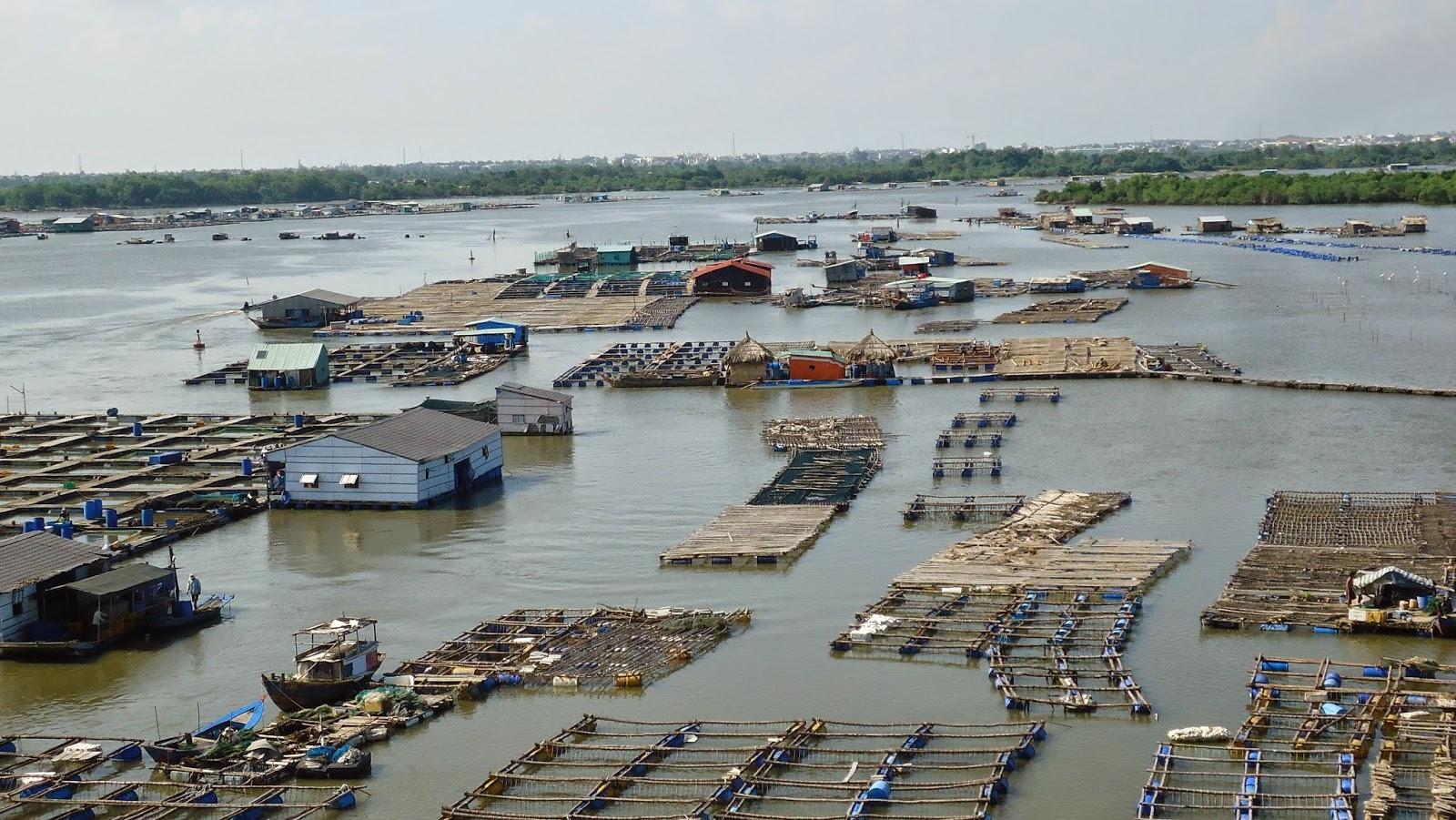 Khám phá đảo Long Sơn