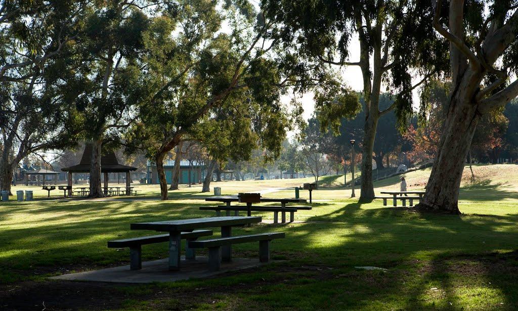 Buổi sáng ở công viên